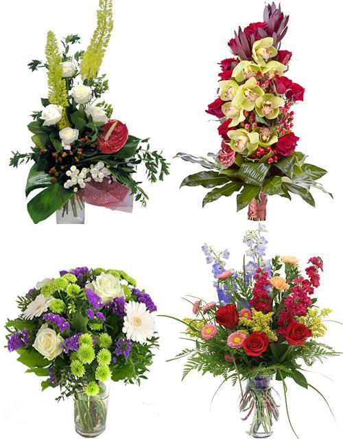 цветы фото для мужчин