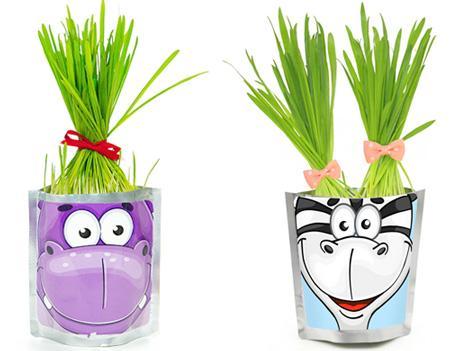 Набор для выращивания травы