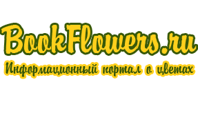 bookflowers.ru