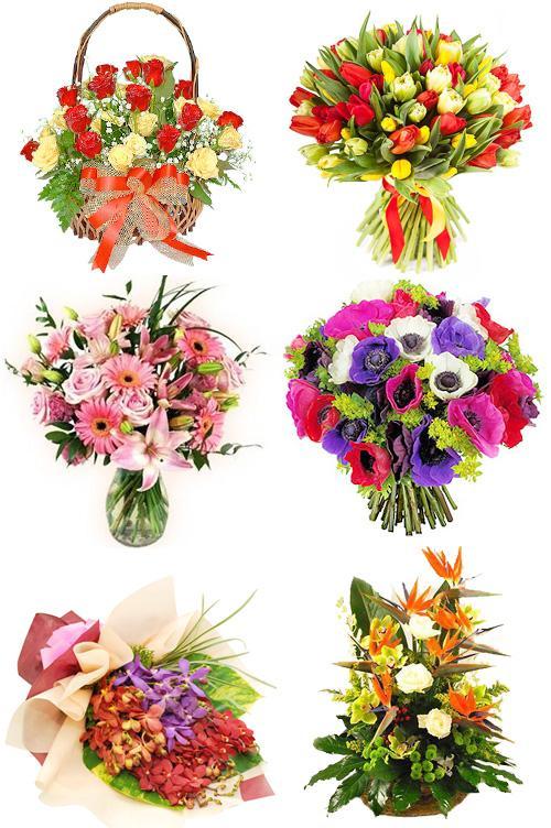 Какие цветы подарков на юбилей женщине в 55 лет — img 9